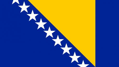 bosnianflag